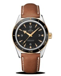 OMEGA Seamaster 300 Master Co-Axial 41mm 233.22.41.21.01.001